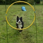 Billy goes through the hoop