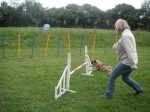 agility and web pics and trains 107